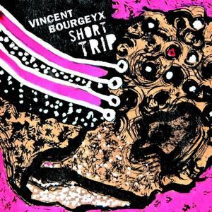 «Short Trip», le nouvel album de Vincent Bourgeyx