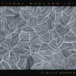couverture de l'album Elastic Border par Etienne Manchon trio