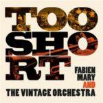 Couverture de l'album Too Short de Fabien Mary and The Vintage Orchestra